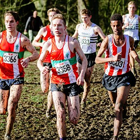 English Cross Country: Southern Champs