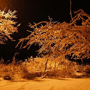 Winter photos!!!
