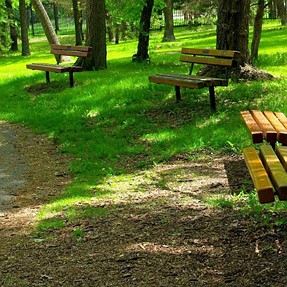 "Show me YOUR ""lonely benches""  :-)"