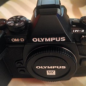 Olympus OM-D E-M1, HLD Battery Holder, GS5 Grip Strap: 1,267 shutter count