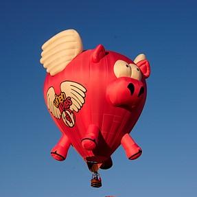 ABQ Balloon Fiesta pics.....