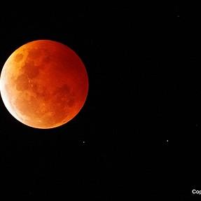 Blood Moon Downunder