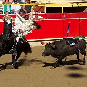 Em1 +50-200 mk1 goes to the bullfight...CAF works fine