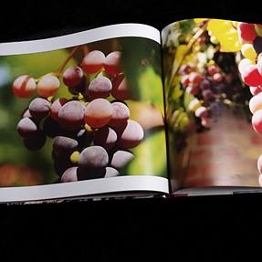 Gift Idea: Personal Photo Books (long post)