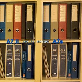 A7 II vs A7s High ISO