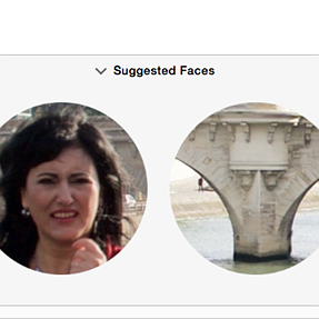 Suggested Faces