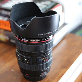 Canon 24-105 F4L USM IS