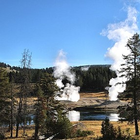 Scenes at Yellowstone NP