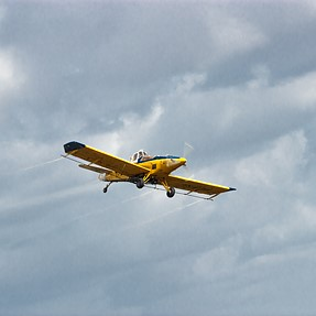 Yellow light plane