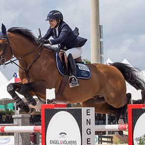 Showjumping...Winter Equestrian Festival, West Palm Beach, FL.