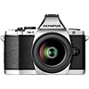 Mid-range Mirrorless camera roundup 2013