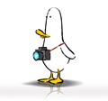 What The Duck #1402