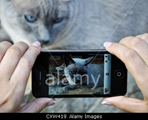 Stock photo agency Alamy now allows mobile photos